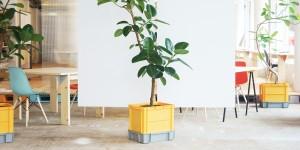 Planter01